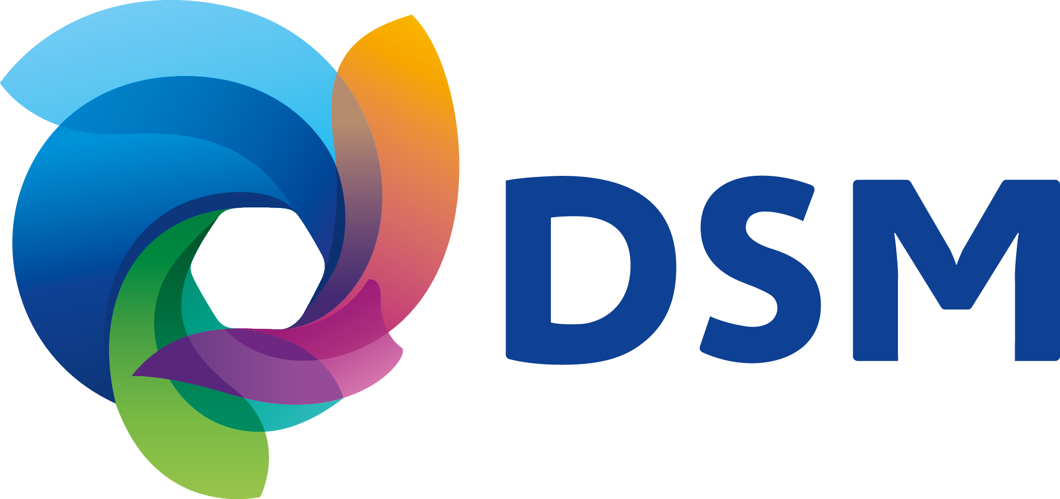 Logo Royal DSM